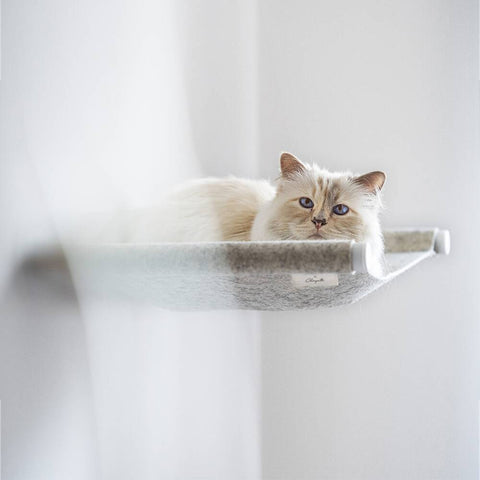 Cat Hammock Swing: Choupette Edition