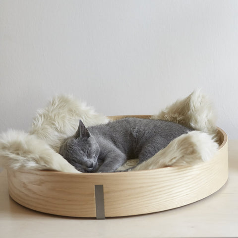 Anello Cat Basket Ash/Ivory