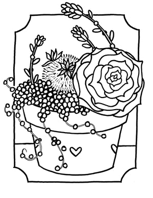Succulent Coloring Outlines