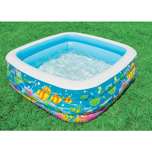 Piscina Aquarium - Intex