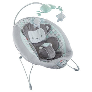 Fisher-Price Sweet Surroundings Macaco Deluxe Bouncer