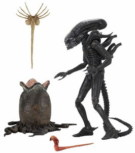 "PRE-ORDER Alien - 7"" Scale Action Figure - Ultimate 40th Anniversary Big Chap"