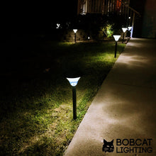 2 Pack - Super Bright Solar Path Lights 60 Lumens LED Solar Landscape Lights for Pathway, Warm White (3000K), Waterproof, Brightest on Market