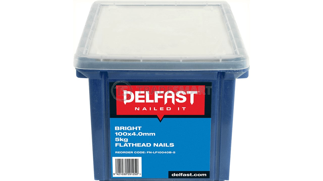 Delfast Flat Head Loose Nails - Bright