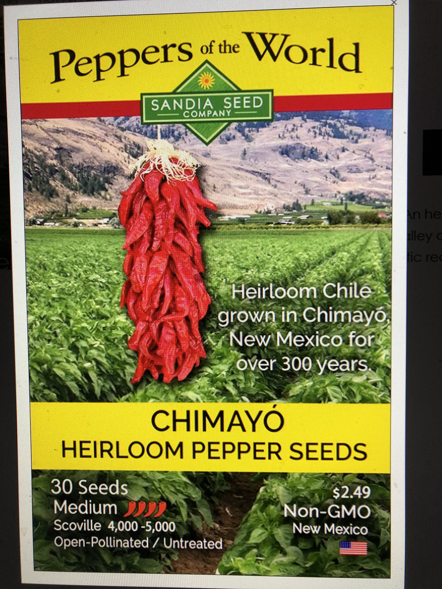 New Mexico Chile Seeds NON GMO