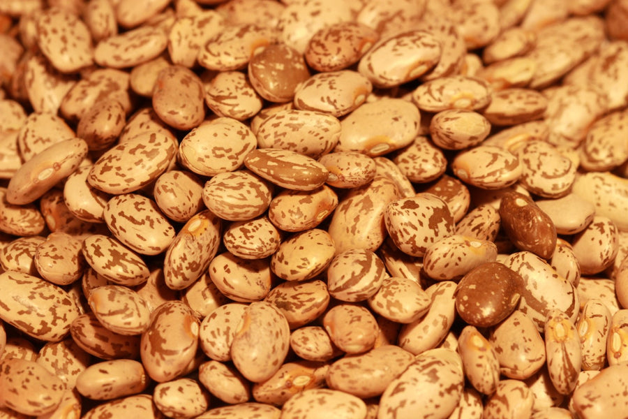 "New Mexico grown ""Pinto Beans"""