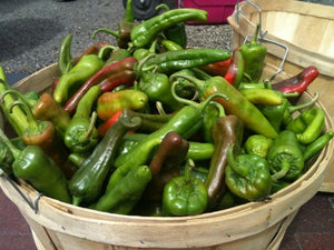 FRESH GREEN CHILE from New Mexico Farmers - 2019