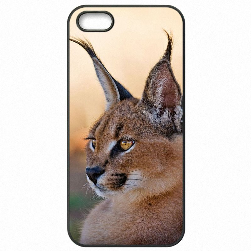 Cyber Monday Africa Lynx Caracals kitten Poster For Sony Xperia Z3 D6653 Cell Phone Skin Case