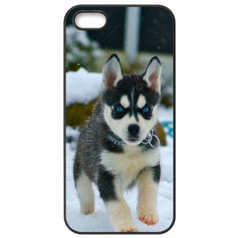For Sony Case Hard Phone Covers Animal Husky puppy Siberian Huskies Dogs For Sony Xperia Z5 Mini Reasonal Price