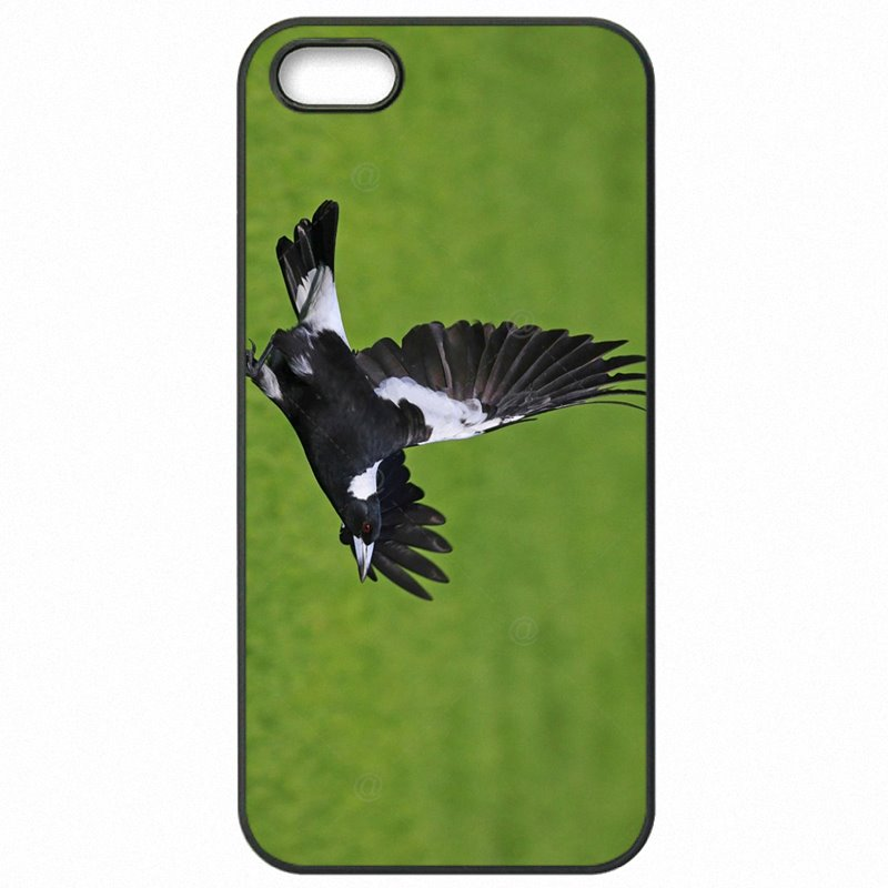 Hard Plastic Phone Case Australian Magpie North Island For iPhone 6S 4.7 inch Boutique