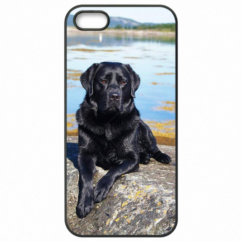 Wholesale hello pretty Black Lab Labrador puppy Dog Art For Sony Xperia X F5122 Protector Phone Shell