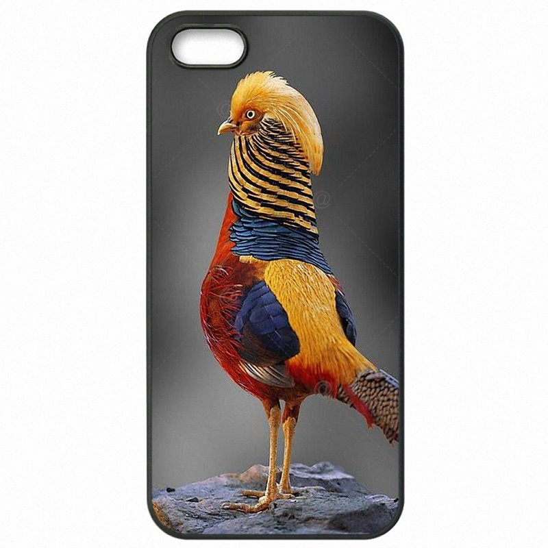 Hard Phone Shell Case Golden Pheasant Birds Wallpaper For Galaxy J1 J100F Stylish