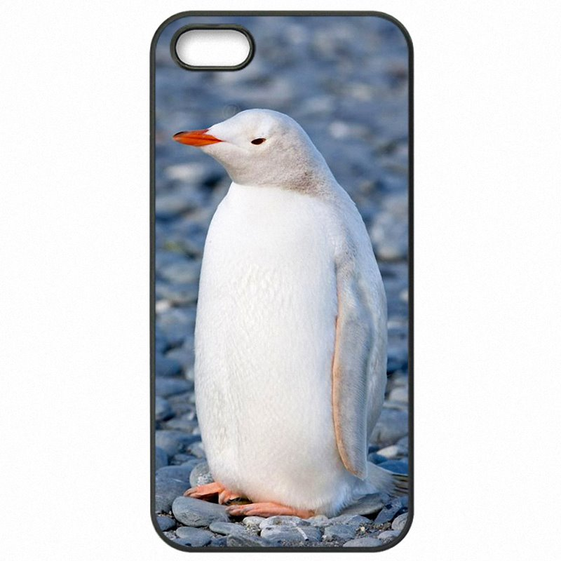 Incredible Lovely Art Print Penguin Cartoon Print For Lenovo A7000 5.5 inch Hard Phone Cover Skin