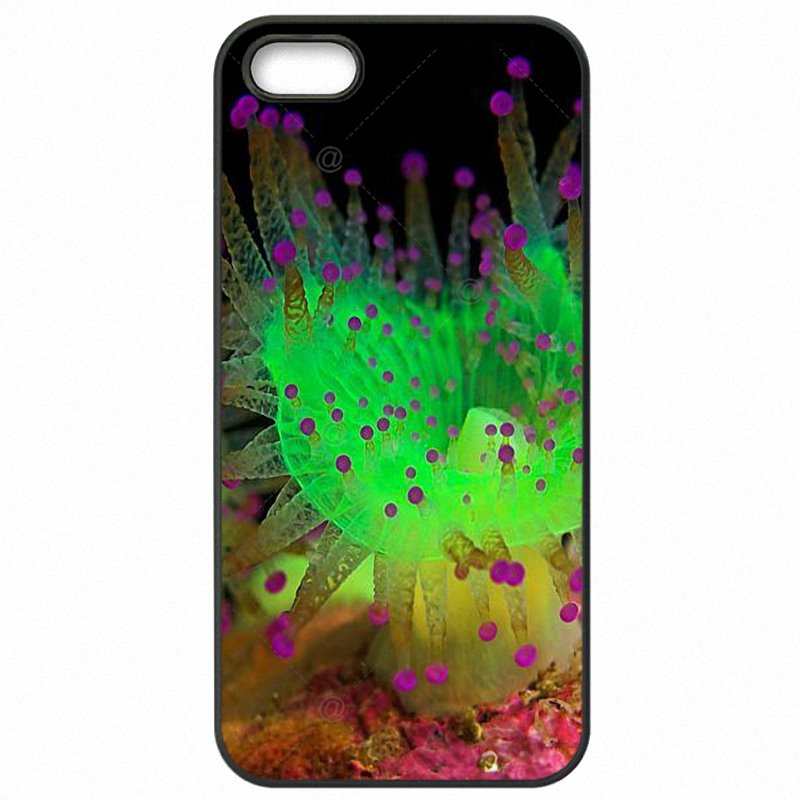 Greatest Open Magenta Jewel Anemones Colorful For Galaxy Note Edge N915K Protector Phone Covers Case