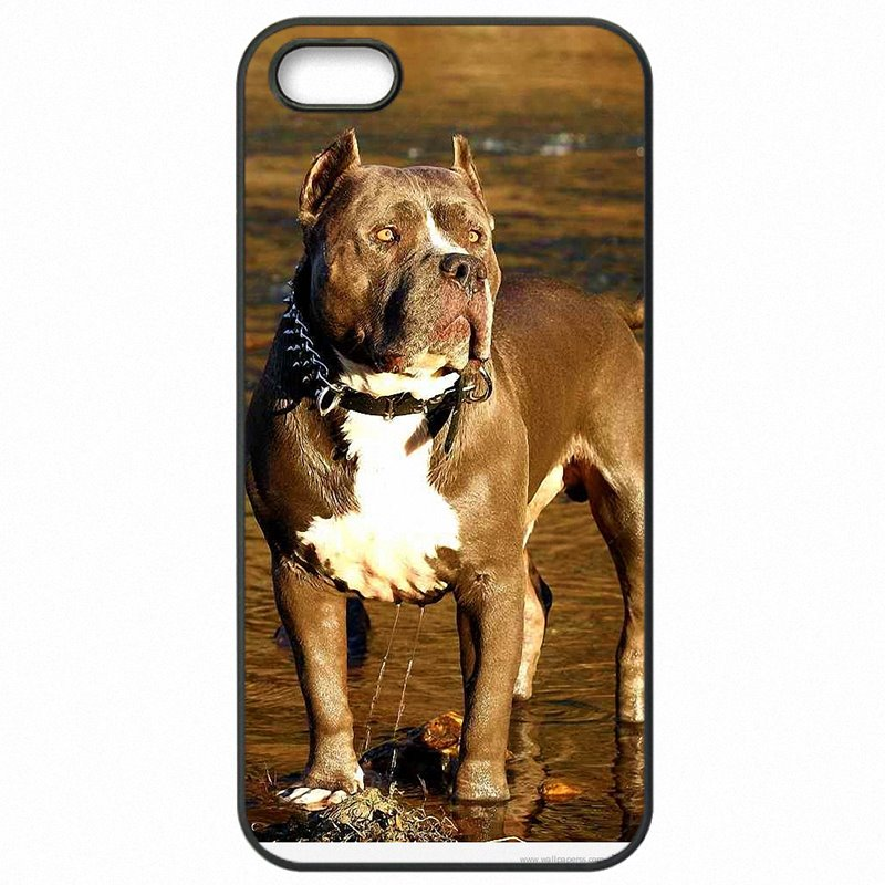 Novel For Lenovo K30-W Pastel Puppy Pitbull Dogs Art Painting Pattern Animal Cell Phone Fundas