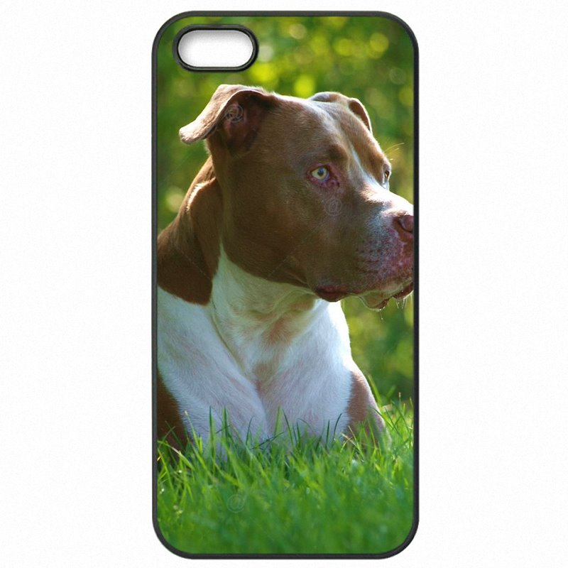 Plastic Phone Shell Case For Huawei Honor 6 5 inch Pastel Puppy Pitbull Dogs Art Painting Pattern Animal Adorable