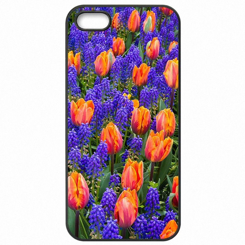 Mobile Phone Cover Fundas Red Blue Spring Colorful Tulips flower field Art For Galaxy A5 2016 A510M Women