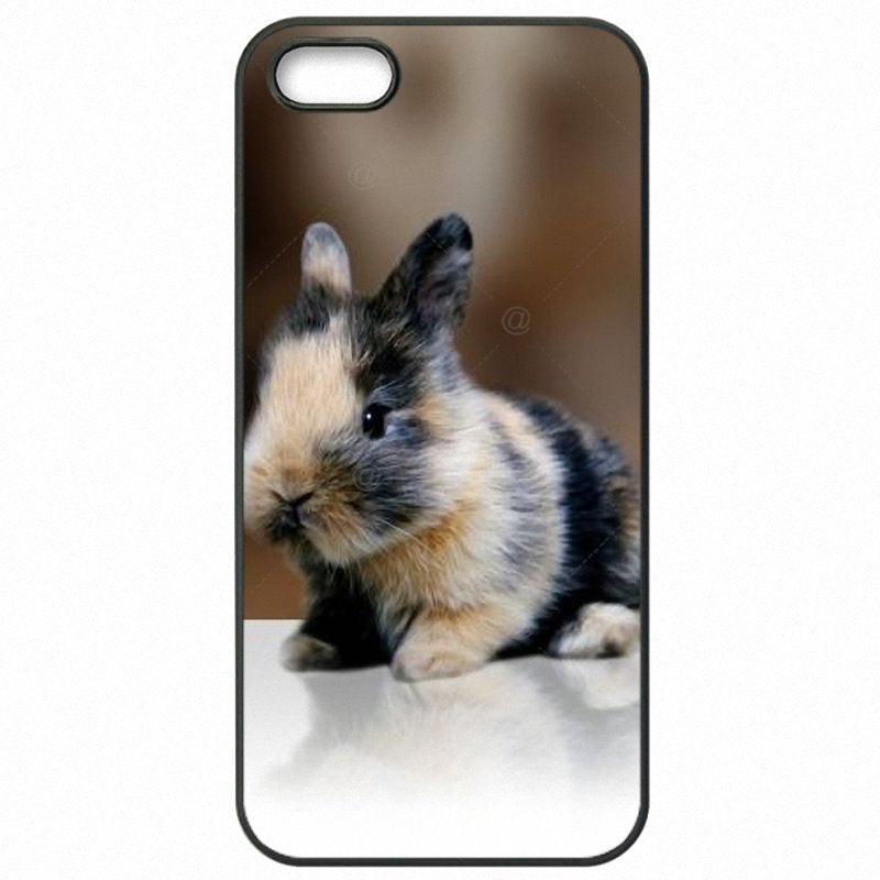 The Newest For Sony Xperia XA F3115 White Gray Baby Rabbits Poster Hard Phone Covers
