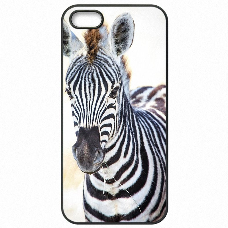Come Low Zebra Face Closeup horse Poster For Xiaomi Redmi 2 4.7 inch Hard Mobile Phone Cover Shell