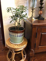 Bamboo Stool Handwoven Handmade Vintage Stool Plant Stand Artwork Home Decor