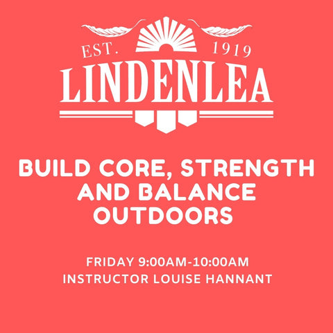 BUILD CORE, STRENGTH AND BALANCE ONLINE