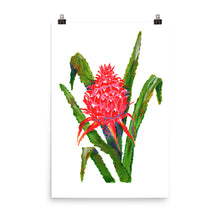 Load image into Gallery viewer, Bromeliad Art Print