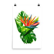 Bird of Paradise • Art Print