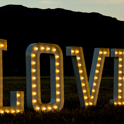 LOVE LED LARGE