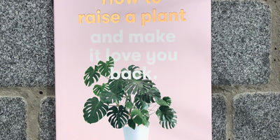 How to raise a plant and make it love you back.
