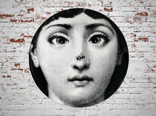 Fornasetti Wall Plate Decorative - Fly on Nose, 8 Inch Ceramic Wall Art Home Decor Dish Ornament Black White Vintage Retro Piero