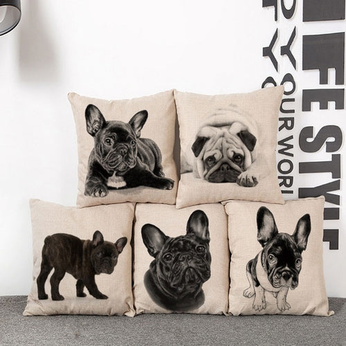 Pug Dog Cushions 43x43cm, Cover only