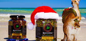A True-Blue Aussie Christmas with Roogenic