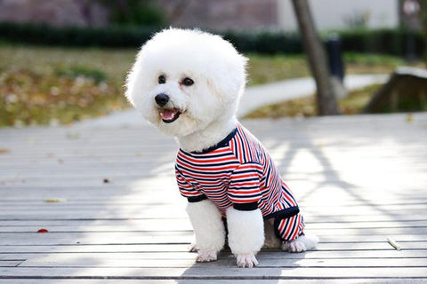 Stripes Pajama fetchdogboutique dog pajamas - Fetch D.o.g Boutique