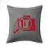 products/CF-State_Pillow-Gray.png