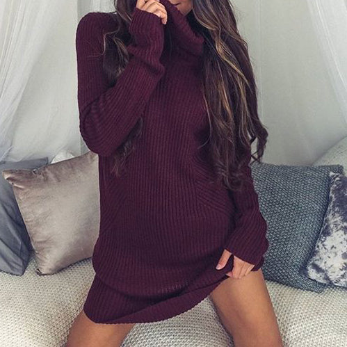 Autumn Warm High Neck Pullover Simple Basic Woman's Knitting Dresses