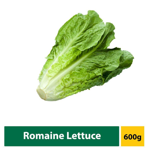 Lettuce Romaine 600G Fresh Vegetable