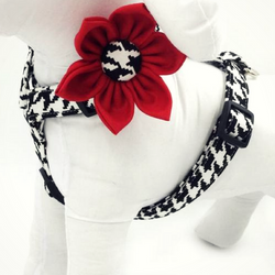 Designer Pet Harness with red flower - Always Whiskered