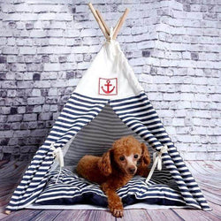 Navy Pet TeePee -Always Whiskered