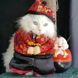 Prosperity Chinese Pet Costume - Always Whiskered