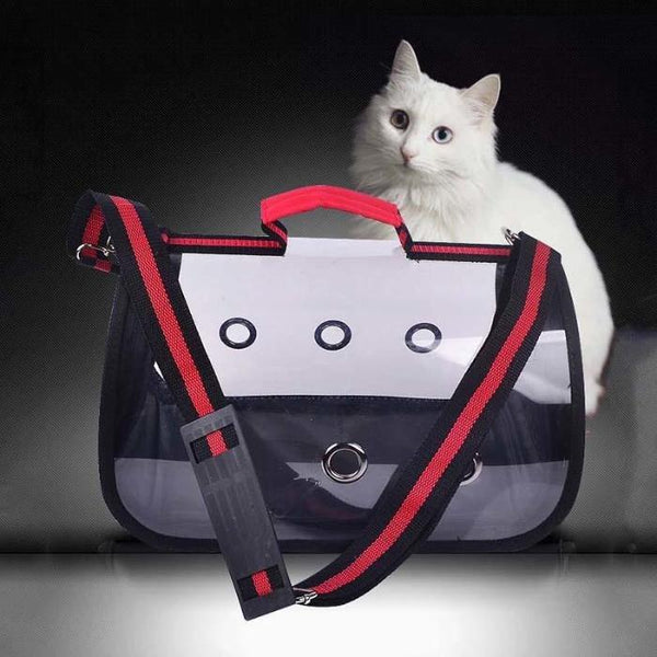 Modern Transparent Pet Carrier - Always Whiskered