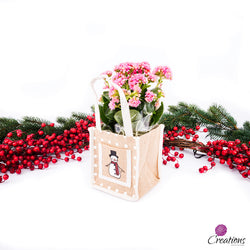 Christmas Living Planter, Snowman Gift Bag, Pink Plant, Living Planters,- Creations Flowers