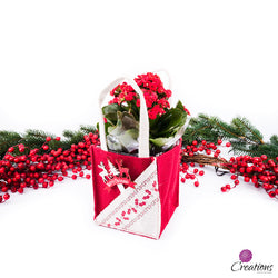 Christmas Living Planter, Holly Gift Bag, Red Plant, Living Planters,- Creations Flowers
