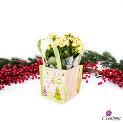 Christmas Living Planter, Tree Gift Bag, Yellow Plant, Living Planters,- Creations Flowers