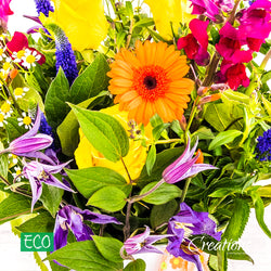 Eco-Friendly White Decorative Container Luxurious Flower Arrangement, Arrangements,- Creations Flowers
