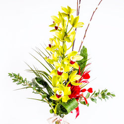 White Orchid Vase Arrangement, Arrangements,- Creations Flowers