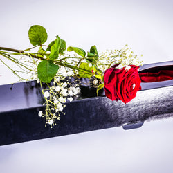Luxury Single Red Rose in Presentation Gift Box, Valentine's Day Roses,- Creations Flowers