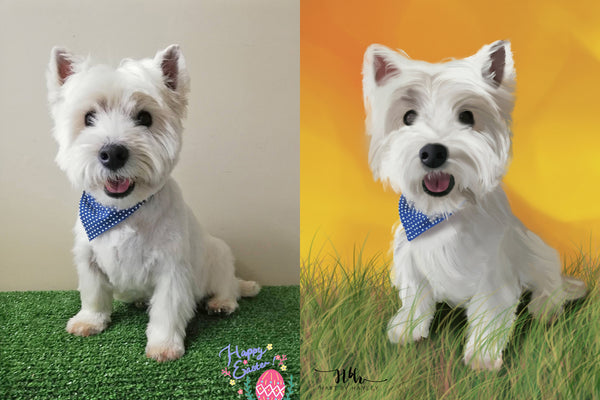 photo realistic digital illustration dog before after