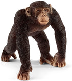 Chimpanzee, Male (14817)