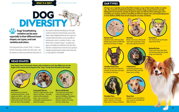 National Geographic Kids: Dog Breed Guide