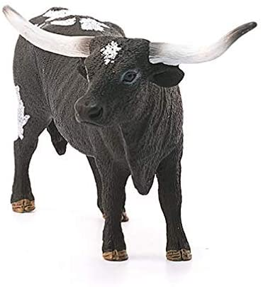 Texas Longhorn Cow (13865)